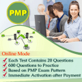 PMP Practice Papers